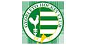 Győri NEMAK ETO HC Logo